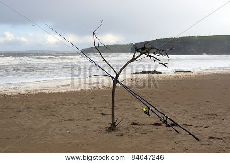 Two Fishing Rods Supported By A Branch