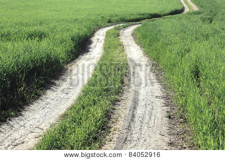 Field winding road