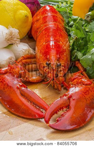 Fresh Steamed Lobster with Lemon and Fresh Vegetables