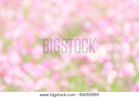 Wallpaper Bokeh Pastel