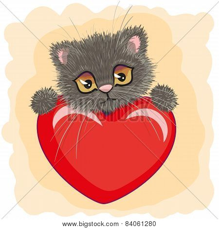 Cute Kitten With Big Red Heart
