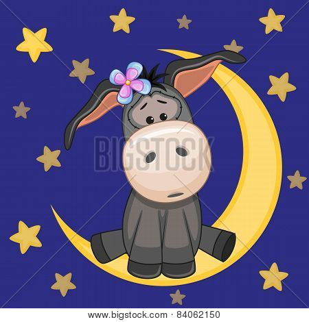 Cute Donkey On The Moon