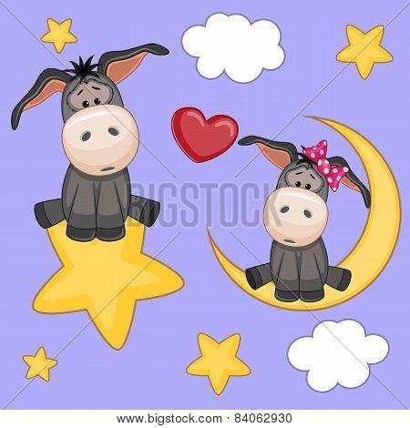 Lovers Donkeys