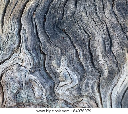 Wooden old texture