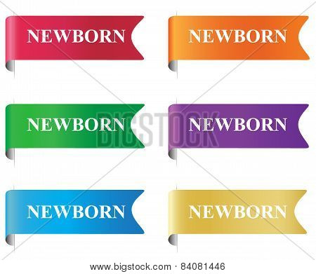 newborn, badge, label, tag, sign, vector, illustration