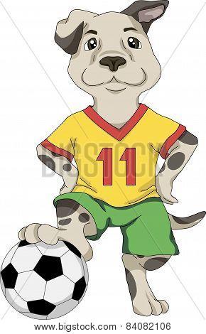 Puppy footballer