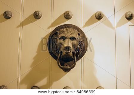 Bronze lion shape hasp on wooden white door