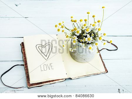 sketchbook with heart drawing  and daisy flowers in a pot. Love.