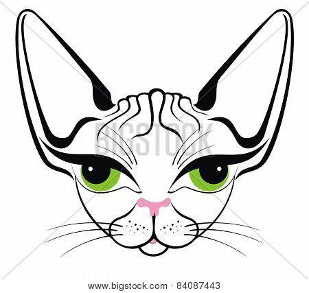 Cat (Egypt cat)