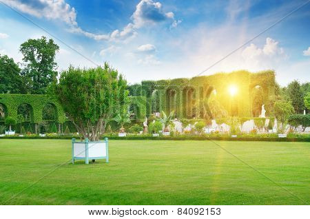 Lawn And Hedge In A Summer Park