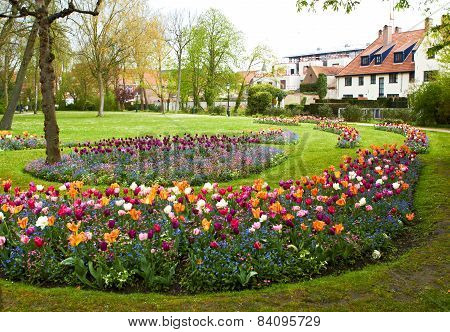 large flower beds full of colourful flowers with houses at background