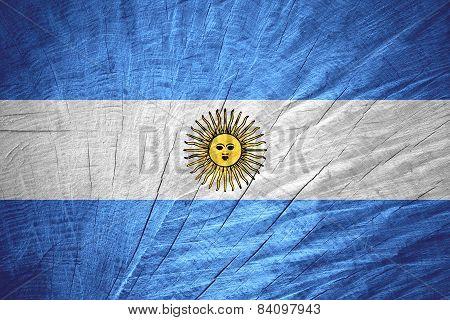 Flag Of Argentina