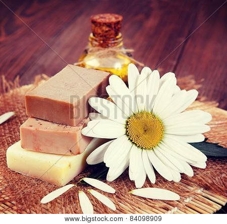 Chamomile And Soap. Vintage Retro Hipster Style Version