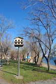 picture of nesting box  - Bird nesting box in a park in Alexandroupolis - JPG