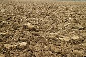 stock photo of plowed field  - Plowed field along a river side in the center of Italy - JPG