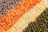 image of legume  - Variety of raw heathy super food legumes and grain - JPG