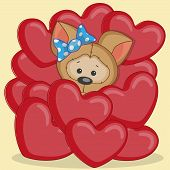 image of puppies mother dog  - Valentine card with puppy in hearts on yellow - JPG