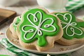 pic of clover  - Green Clover St Patricks Day Cookies Ready to Eat - JPG