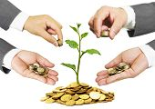 image of golden coin  - Hands of businessmen giving coins to a tree growing on golden coins - JPG