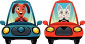 Animals in the car: Dog and Cat.