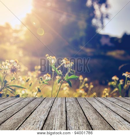 Wood Floor And Beautiful Flower And Sunlight Vintage