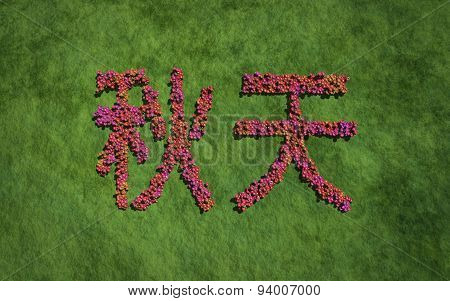 Autumn Chinese Text Flower With Grass Background