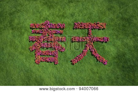 Spring Chinese Text Flower With Grass Background