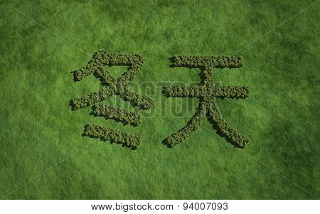 Winter Chinese Text Tree With Grass Background