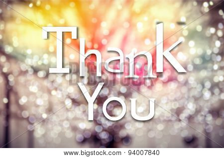 Thank You Typography On Winter Tree Bokeh Background