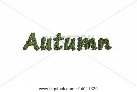 Autumn Text Tree With White Background