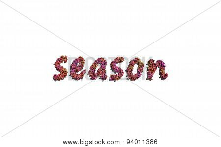 Season Text Flower With White Background