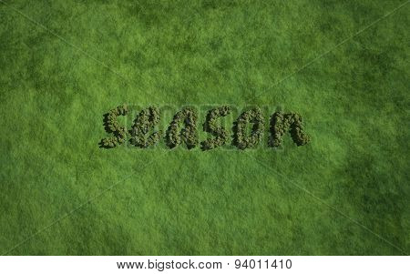 Season Text Tree With Grass Background