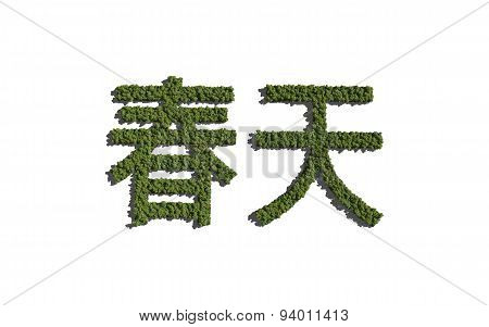 Spring Chinese Text Tree With White Background