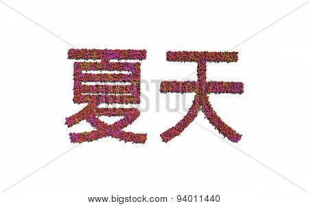 Summer Chinese Text Flower With White Background