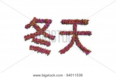 Winter Chinese Text Flower With White Background