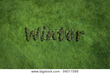 Winter Text Tree With Grass Background