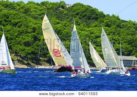 regatta start boats sailing upwind
