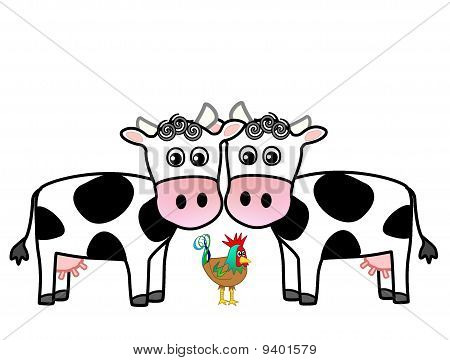 two cows and a rooster
