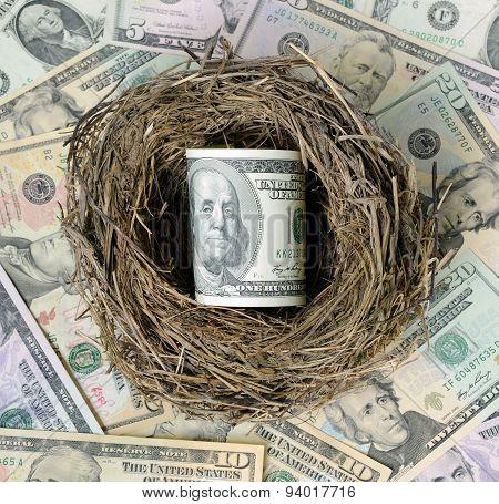 Dollars In A Bird's Nest.