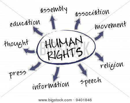 Human Rights Chart