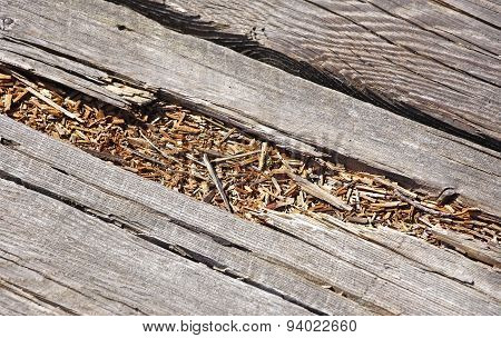 Rotted wood on boardwalk path