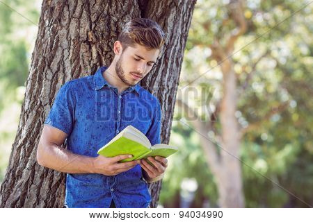 Young man reading a book in the park on a sunny day