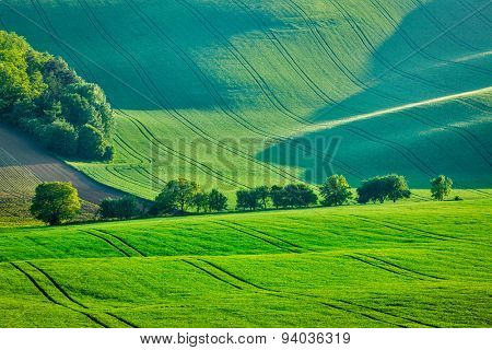 Rolling summer landscape of Moravia, Czech Republic