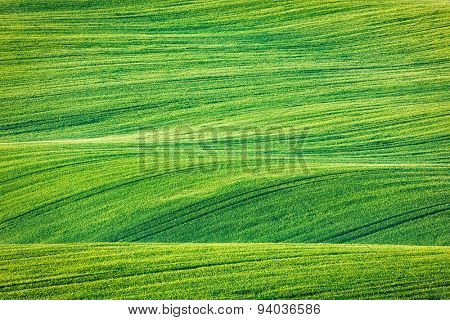 Abstract pattern texture of rolling fields in summer. Moravia, Czech Republic