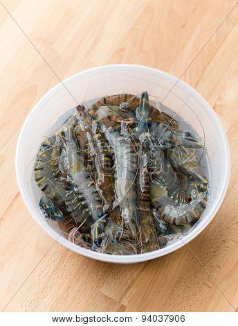 Fresh shrimp in plastic container