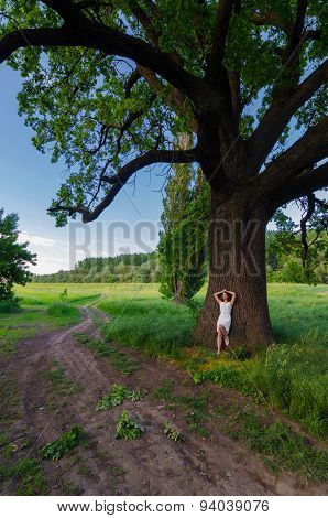 Young Girl Resting In Shade Of Giant Oak On Beautiful Summer Day