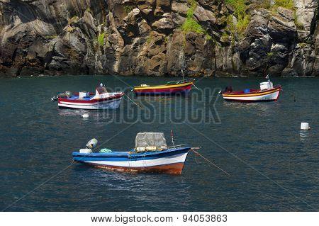 Harbor of Camara de Lobos resort, Madeira island, Portugal