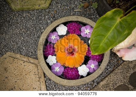 Bowl Of Beautiful Flowers In Spa Area