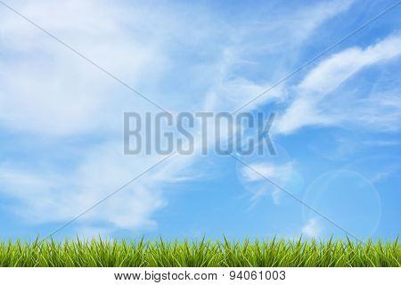 Grass Grass Under Blue Sky And Clouds