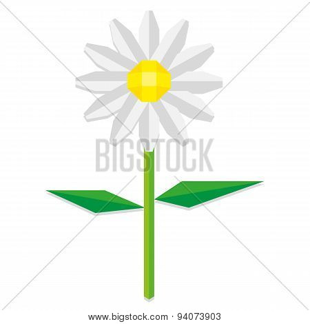 Vector Low Poly Style Daisy Flower Isolated